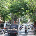 Les conseils de Christian Klimczak pour se déplacer à Bali