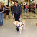 Le dressage des chiens guides d'aveugle