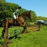L'équitation: un sport discret mais populaire