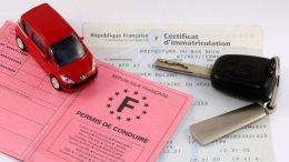 Carte grise et permis de conduire