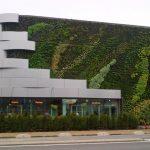 Végétalisation des murs et des toits