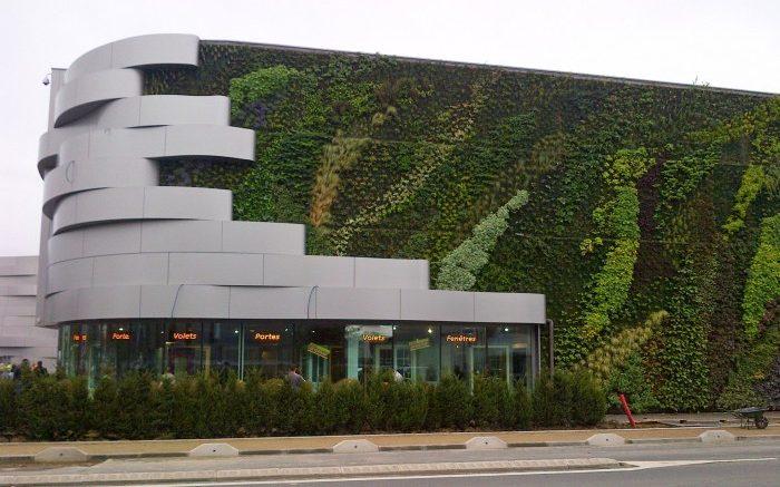vegetalisation-des-murs