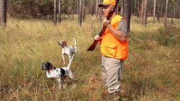 hunter-dogs