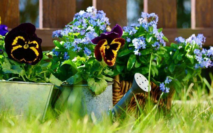 Le jardinier l'homme de main pour votre jardin