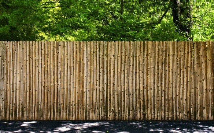 canisse bambou ambiance naturelle