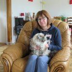 Solliciter un magnétiseur pour le soin des animaux