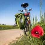 L'intérêt de passer par une agence de voyages à vélo