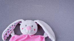 hare-1246415_640