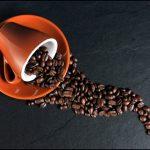 Pays producteur, arôme, parfum : comment choisir son café