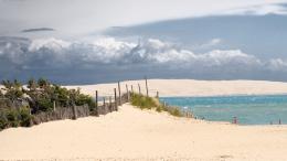 location capferret dune (1)