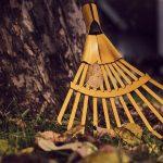 Les différents travaux de nettoyage de jardin en automne