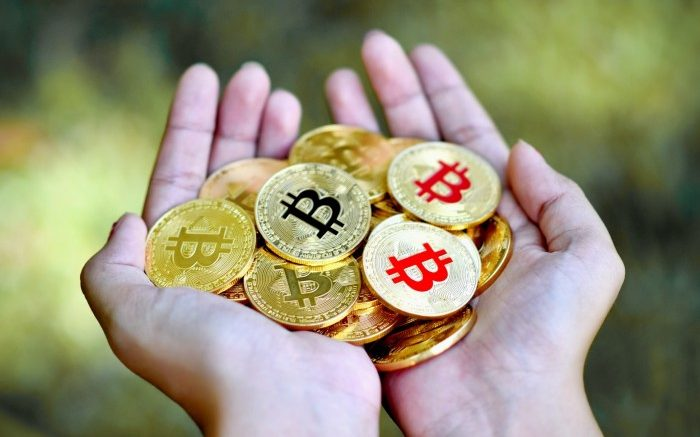 investissements-en-cryptomonnaie (1)