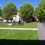 Pourquoi et comment aménager un espace public ?