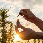 CBD : les bienfaits offerts par l'huile de CBD
